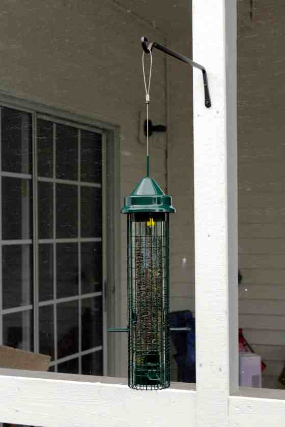 New Squirrel Proof Bird Feeder - Charleston Crafted