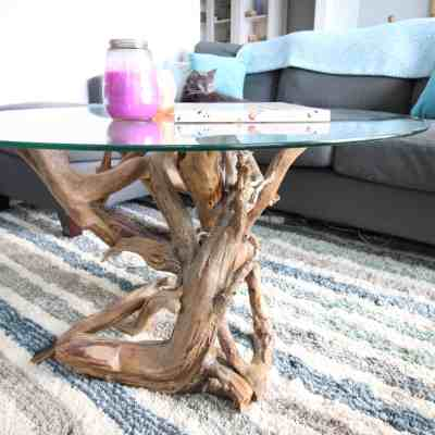 DIY Driftwood Coffee Table Update