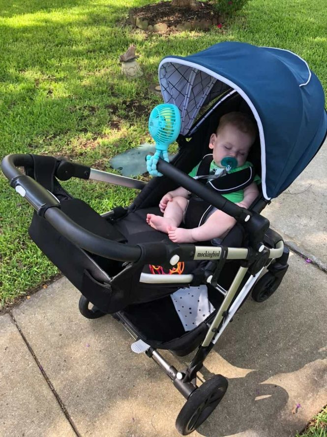 Double Jogging Stroller Reviews Consumer Reports | Bruin Blog