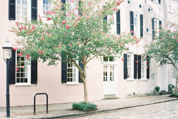 You Have To See These 15 Photos Of Charleston In Bloom