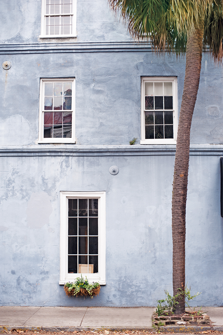 Blue Wall of Charleston