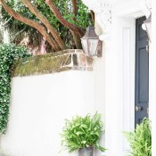 June Travel Guide to Charleston