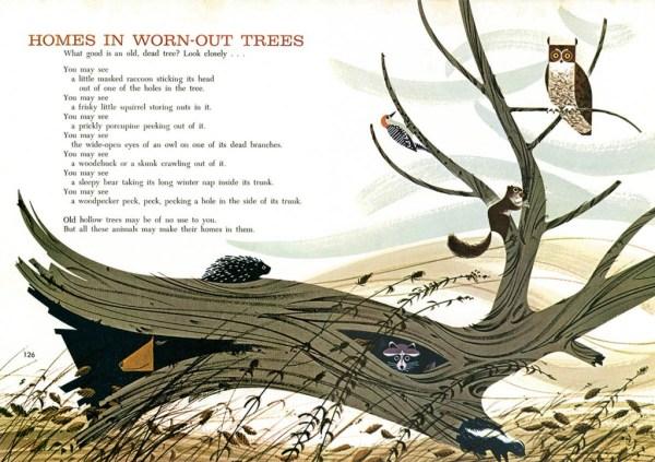 Owls & Tree   Charley Harper Prints   For Sale