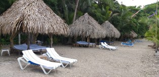 Lots of chaise lounges & umbrellas