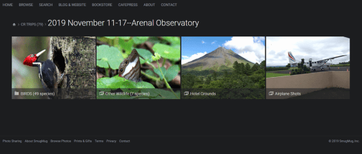 Arenal-2019-Screenshot-WEB
