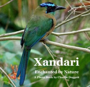 Xandari 2018-Enchanted by Nature