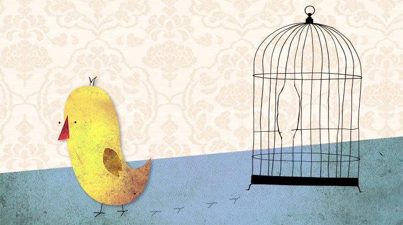 De emancipatie van het kanariepietje