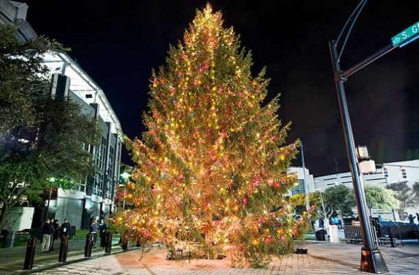 Restaurants Open On Christmas Day Charlotte Nc.50 Free Things To Do With Friends And Family Thanksgiving