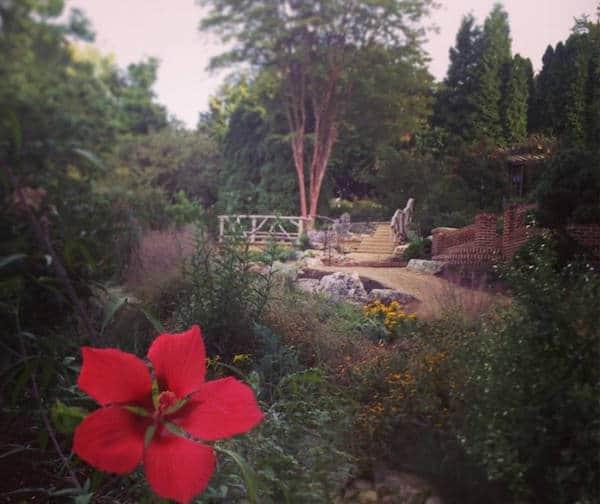 uncc botanical gardens