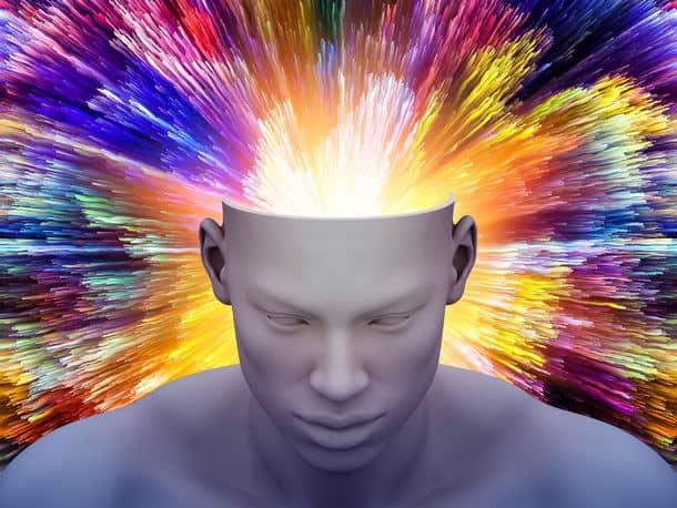 Brain Power trivia Charlotte
