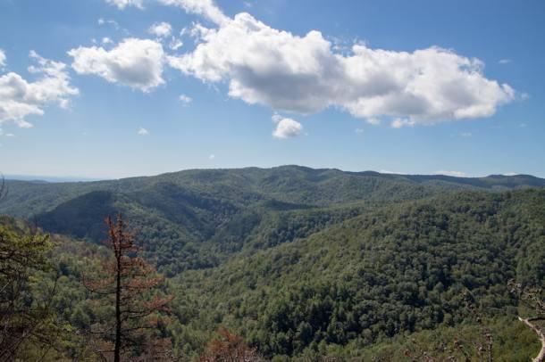 South Mountains State Park Chestnut Knob Vista