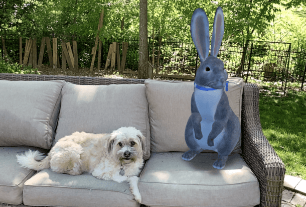 dog and Google 3D Easter Bunny