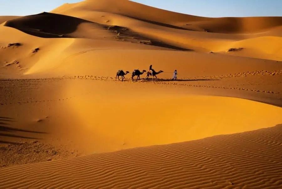 Voyage à dos de chameau dans le désert de Merzouga au Maroc