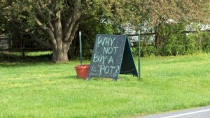 """Why not buy a pot?"" sign from Mud Dauber pottery Studio in Earlysville VA"