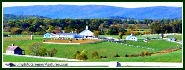 Charlottesville VA Horse Farms for Sale