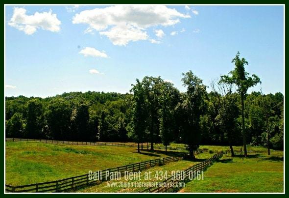 Louisa County VA Equestrian Estate for Sale