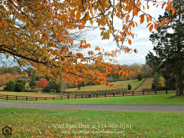 Madison County VA Equestrian Estate for Sale