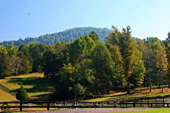 Horse Farm for Sale in Madison County VA