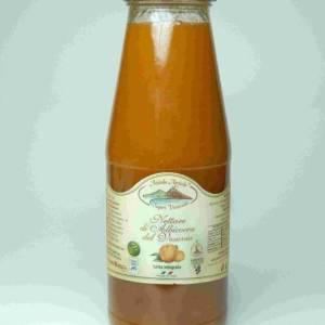 Sapori Vesuviani confettura Nettare di albicocca del vesuvio
