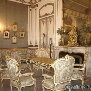 Il salone con gli stucchi d'oro
