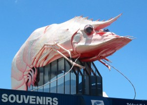 Big Prawn, Ballina NSW (Image: Wikipedia)