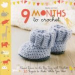 9 Months To Crochet cover design - blue baby booties
