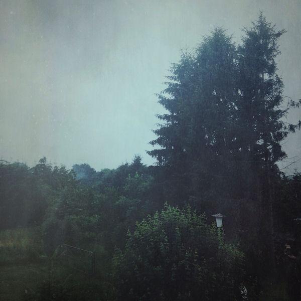 Regen in MV - © Liisa