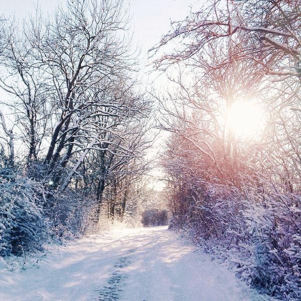 Schneewelt - © Liisa