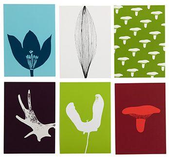 Design by Nature Cards - © dog design