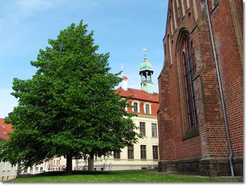 Blick von hinten auf das Rathaus - © Liisa