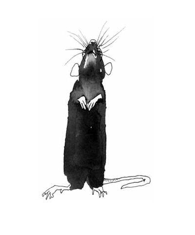 Tuschezeichnung einer Ratte - © Maria Luisa Witte