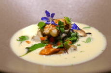 Saveur Art Valentine's Day 2015 Menu Potage of Oyster Champagne