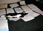 Helping with the Paperwork