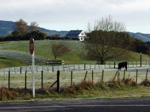 Frost just out of Katikati. There was hail left in the ditches, too.