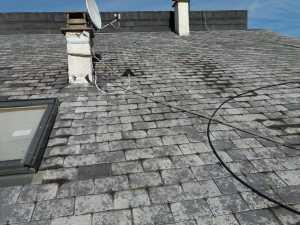 charpentier---couvreur-nettoyage-demoussage-de-toit