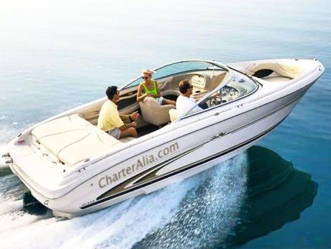 Aluguer uma lancha Ibiza Sea Ray 210 para 8 pessoas