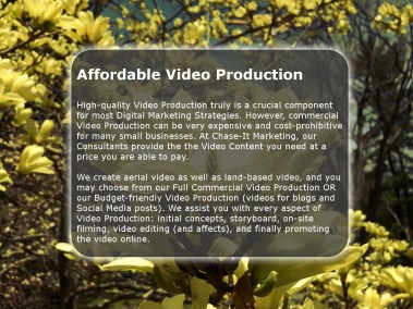 Video Production by Chase-It Marketing - Zoo Road at Durand-Eastman Beach - Copyright, © 2019 Colin Chase