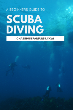 A Beginners Guide to Scuba Diving | Learn all bout scuba diving and the dive equipment you need to get started and have many successful dive. | Chasing Departures | #scuba #scubadiving #divetips #scubadivingguide #travel #adventure