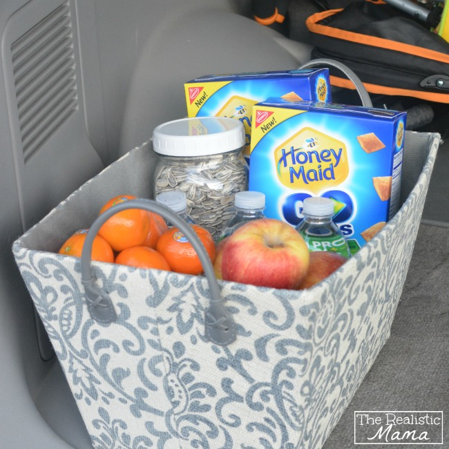 A basket filled with fruit, seeds and water bottles in the trunk of a car