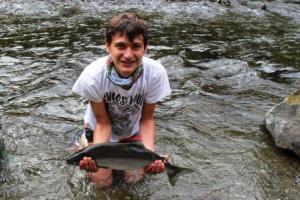 pink salmon run quinsam river