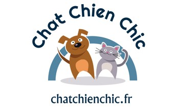 chat chien chic