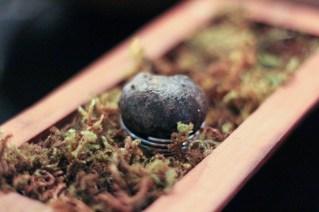 Truffle Croquette