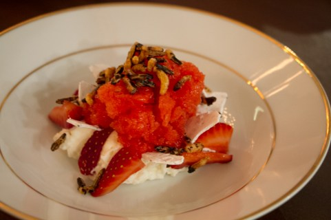Strawberry Granita, amazake, puffed rice black sesame
