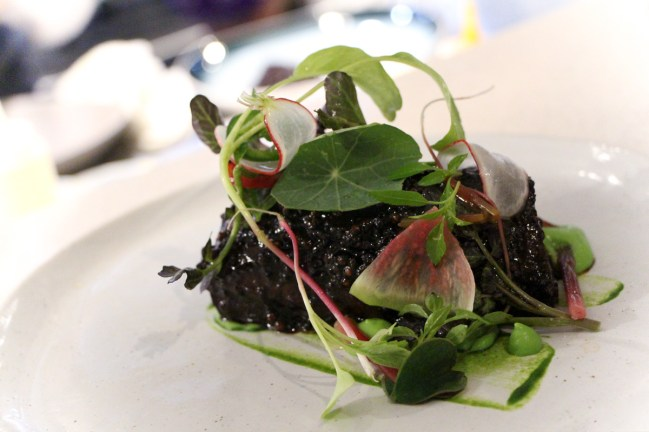 Short Rib – wild ramp, watercress, thai basil, coriander seeds, radish