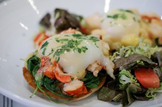 Maine Lobster Benedict on top of English muffins, arugula and Old Bay Hollandaise.