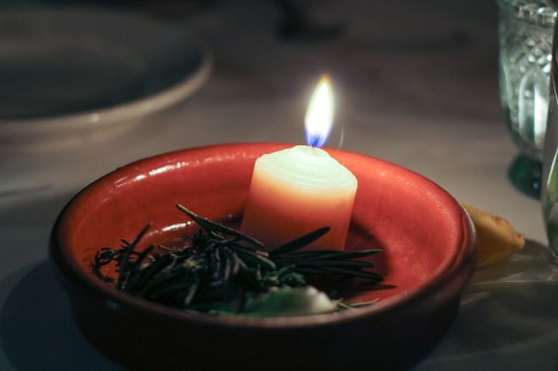 Beef fat candle surrounded by herbs