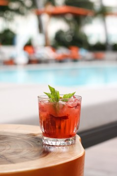 Caipi Mediterránea w/ Russian Standard, Lime, Cane Sugar, Strawberries, Grapes and Basil