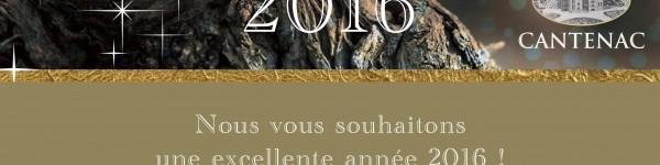 Voeux 2016 Texte & Image