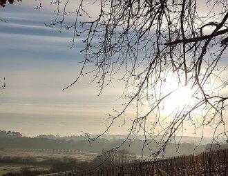 oenotourisme, visite chateau, propriété dégustation de vin bordeaux