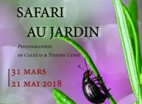 """Exposition """"Safari au Jardin"""" du 31 mars au 21 mai"""